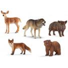 A - 5 animaux de la forêt