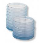 33 boîtes de Petri