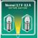 2 ampoules 3,7 V - 0,3 A - culot lisse